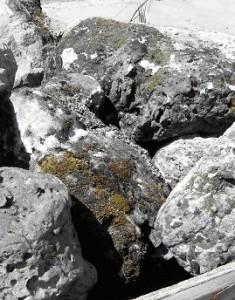 Two Man Moss Rock
